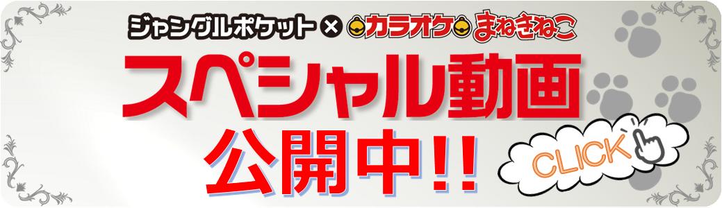 スペシャル動画_バナー.png