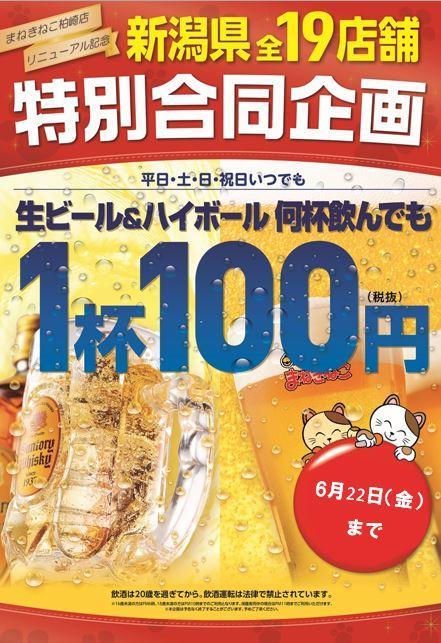 カラオケまねきねこの【新潟県内まねきねこ限定】ビール・ハイボール100円!のキャンペーン・フェアの詳細